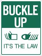 Buckle up its the law